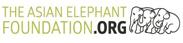 the asian elephant foundation logo